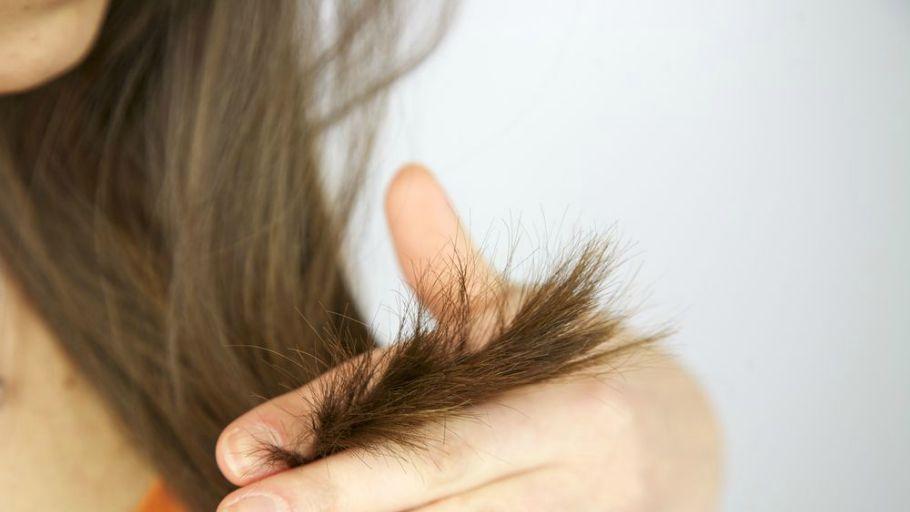 Чем в домашних условиях полечить кончики волос